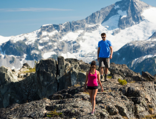 THE WHISTLER INSIDER'S SPRING HIKING REPORT AND SUMMER PREDICTIONS